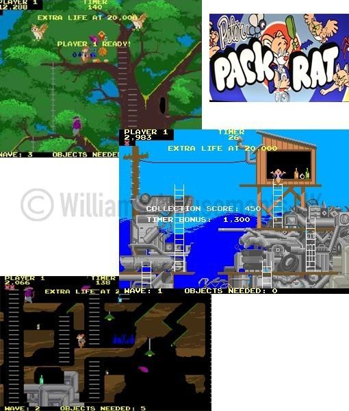 PETER PACK RAT WEB